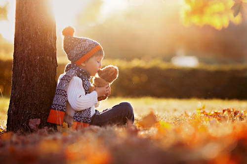 Adorable little boy with teddy bear in park